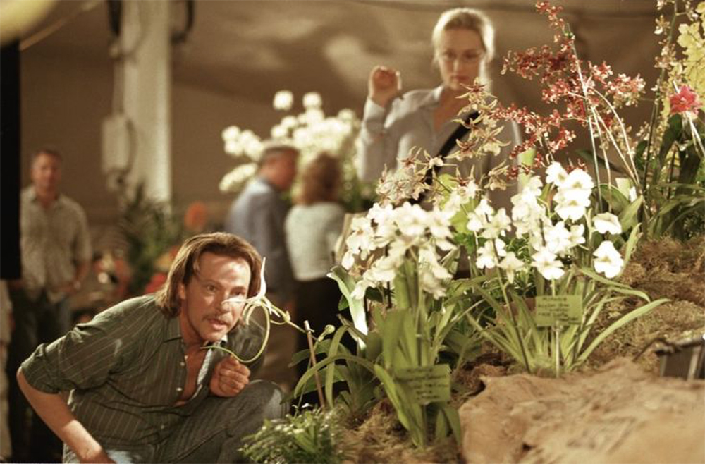 """Happy Together:"" The Insect and the Orchid in Kaufman and Jonze's Adaptation, Sternlieb, Literature Film Quarterly"